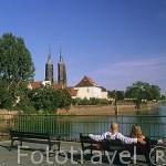 Parque de la isla de la Arena. Al fondo la catedral de San Juan Bautista. (s.XIII-XVIII). Isla de Ostrow Tumski. WROCLAW. Silesia. Polonia