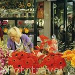 Venta de flores en la Plaza del Mercado. Ciudad de WROCLAW. Silesia. Polonia