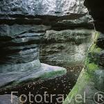 Caprichosas formaciones rocosas de arenisca y marga forman intricados senderos visitables. Reserva natural de Bledne Skaly en la montañas de Gory Stolowe. Baja Silesia. Polonia