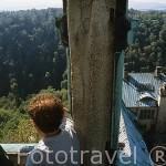 Vista desde la torre del palacio de KSIAZ (s.XIII-XX). A la izq guia: Mieczystaw Janus. Propiedad: 250 hectareas. A las afueras de WALBRZYCH.El más grande de la Baja Silesia. Polonia