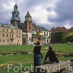 Catedral, castillo Real y el recinto amurallado de Wawel. CRACOVIA. Polonia