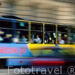 Tranvia circulando en las calles de CRACOVIA. Polonia