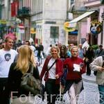Gente paseando por la calle de Grodzka. CRACOVIA. Polonia