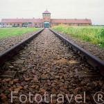 Antiguas vias de tren, entrada al campo de concentración de Auschwitz II llamado Birkenau (abierto en marzo de 1941), a 3 kms de Auschwitz I. Situado al oeste de la ciudad de CRACOVIA. Polonia