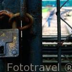 Candado cerrando el acceso al campo de concentración de Auschwitz II, llamado Birkenau (abierto en marzo de 1941), a 3 kms de Auschwitz I. Al oeste de la ciudad de CRACOVIA. Polonia