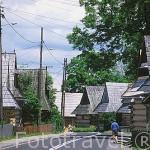 Casas de madera (XVIII al XIX) en la calle principal de la población de CHOCHOLOW. Cerca de Zacopane. Zona de Malopolska y montañas Tatras. Polonia