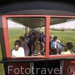 Excursion en el tren de via estrecha de Znin. En ZNIN. Polonia