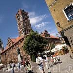 Escultura a Copernico y la torre del Ayuntamiento. Ciudad de TORUN, (Unesco). Kuyavia- Pomerania. Polonia