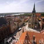 Vista de la ciudad de TORUN (Unesco) desde la torre del Ayuntamiento. Kuyavia- Pomerania. Polonia