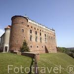 El castillo de Golub Dobrzyn. Aqui se organizan torneos medievales con caballos, armaduras. GOLUB DOBRZYN. Region de Kuyavia- Pomerania. Polonia