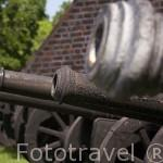 Cañones en la entrada del castillo de Golub Dobrzyn. Aqui se organizan torneos medievales con caballos, armaduras. GOLUB DOBRZYN. Region de Kuyavia- Pomerania. Polonia