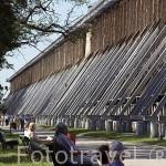 Una de las 3 torres de gradacion de aguas salinas.Tiene 15,8mts de altura, utiliza ramas de enebro para filtrar el agua. Poblacion de TEZNIA. Region de Kuyavia- Pomerania. Polonia