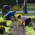 Plantando flores en los jardines del balneario Bristol. En CIECHOCINEK. Region de Kuyavia- Pomerania. Polonia