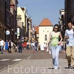 Calle peatonal y comercial de Grudziadzka. Poblacion de CHELMNO. Region de Kuyavia- Pomerania. Polonia