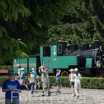 Museo al aire libre de antiguos trenes, locomotoras y vagones de via estrecha en VENECIA. Region de Kuyavia- Pomerania. Polonia