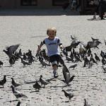 Chico persiguiendo a las palomas en la plaza del Ayuntamiento. Centro historico de la ciudad de TORUN. Kuyavia- Pomerania. Polonia