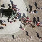 Escultura de Nicolas Copernico en la plaza del Ayuntamiento. Centro historico de la ciudad de TORUN. Kuyavia- Pomerania. Polonia