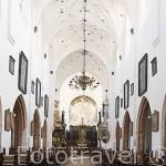 Interior de la catedral de la Oliwa. Estilo Barroco. Cisterciense. s.XVIII. Ciudad de GDANSK. Polonia