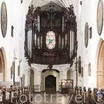 Organo en madera de roble, de 7876 tubos y 110 registros. Por el maestro constructor Jan Wolf. Interior de la catedral de la Oliwa. Estilo Barroco. Cisterciense. s.XVIII. Ciudad de GDANSK. Polonia