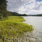 Lago de Ostrzyce, a unos 35 Kms de GDANSK. Polonia