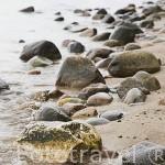 Playa rocosa cerca del acantilado. Zona de la reserva de KEPA REDLOWSKA. En el barrio de Gdynia. Mar Baltico. Norte de Polonia