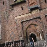 Castillo de la antigua orden de los Teutones en Malbork. MALBORK. Polonia