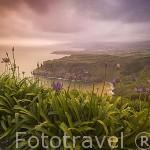 Vista desde el mirador de Santa Iria. Isla de SAO MIGUEL. Azores. Portugal