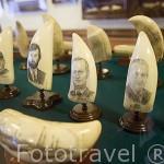 Diente de cachalote tallado con motivo de un barco. Museo del Cafe Sport (Peter Cafe Sport) Abierto desde 1918. Poblacion de Horta. Isla de FAIAL. Azores. Portugal