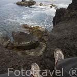 Vista de los acantilados cerca de la poblacion de Varadouro. Isla de FAIAL. Azores. Portugal