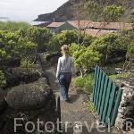 Jardines para pasear. Casa rural Pozinho Bay. Isla de PICO. Azores. Portugal