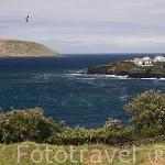 Bahia Das Cantendas. (En el s.XVI los españoles intentaron conquistarlas). Isla de TERCEIRA. Azores. Portugal
