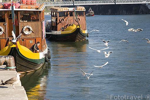 Barcos turisticos en el rio Duero. Ciudad de OPORTO. Portugal