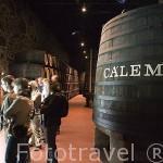 Bodega de vino Oporto Cálem. Ciudad de OPORTO. Portugal