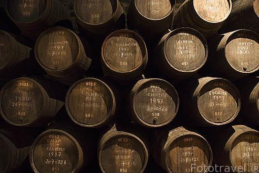 Barriles de la cosecha de 1997. Bodega de vino Oporto Cálem. Ciudad de OPORTO. Portugal