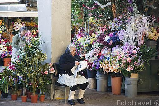 Floristeria. Mercado do Bolhao. Ciudad de OPORTO. Portugal