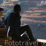 Terraza y mirador de la Quinta do Vallado sobre viñedos de la zona. Cerca del pueblo de REGUA. Portugal