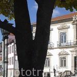 Fachadas de casas y el teatro Ribeiro. Pueblo de LAMEGO. Zona del rio Duero. Portugal