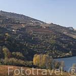 Hotel y Spa Aquapura Douro Valley junto al rio Duero. Pueblo de SAMODAES. Portugal