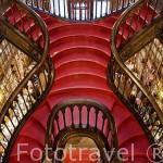 Antigua biblioteca Lello. Ciudad de OPORTO. Portugal