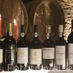 Variedades de vino Oporto representados por la Quinta Avessada. Cerca de la población de FAVAIOS. Valle del Duero. Portugal
