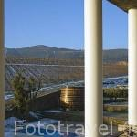 Vista sobre los viñedos desde la Casa das Pipas. Quinta do Portal, cerca del pueblo de CELEIROS DO DOURO. Valle del Duero. Portugal
