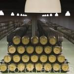 Moderna bodega para vino Oporto diseñada por el arquitecto Alvaro Siza. Quinta do Portal, cerca del pueblo de CELEIROS DO DOURO. Valle del Duero. Portugal