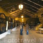 Bodega de vino Oporto Vintage. Quinta da Pacheca. Cerca de REGUA. Zona del Alto Douro.Valle del Duero. Portugal