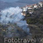 Pueblo de ORDONHO y humo de quema de rastrojos. Zona del Alto Douro. Valle del Duero. Portugal