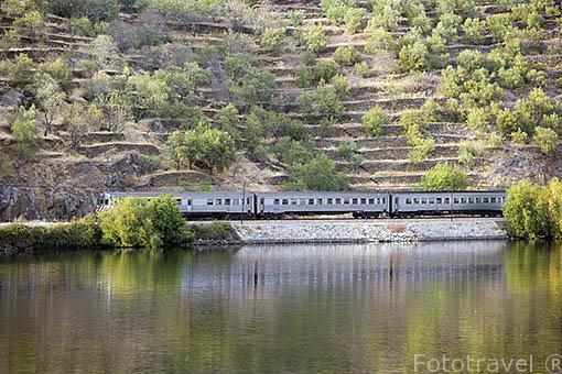 Tren y via de ferrocarril discurren junto al rio Duero. Cerca de la poblacion de REGUA. Valle del Duero. Portugal