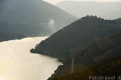 Valle del Duero y viñedos cerca de REGUA. Portugal