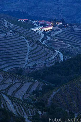Valle del Duero y al fondo, abajo la Quinta Nova entre viñedos. Cerca de COVAS DO DOURO. Portugal