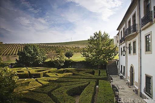 Viñedos, jardin de la quinta do Cidro, cerca de SAN JOAO DE PESQUEIRA. Valle del Duero. Portugal
