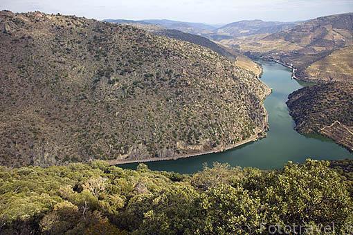 Viñedos y el rio Duero. Valle del Duero. Portugal