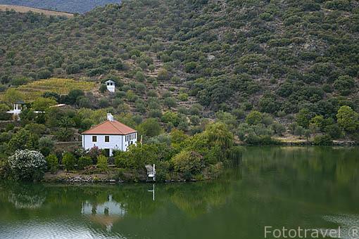 Casa particular junto al rio Duero. Valle del Duero. Portugal